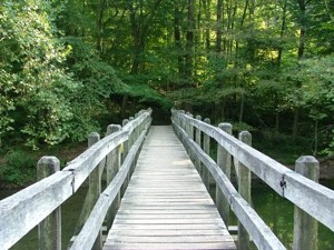 VibrationsCoaching: wooden bridge