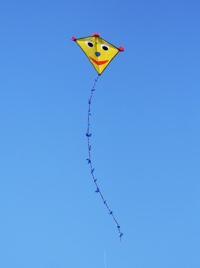 Vibrations Coaching: Kite by A-K Rehse