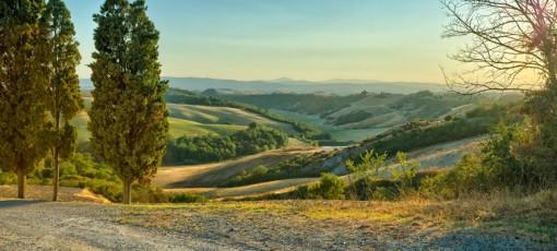 VibrationsCoaching:Rolling Hills - Tuscany
