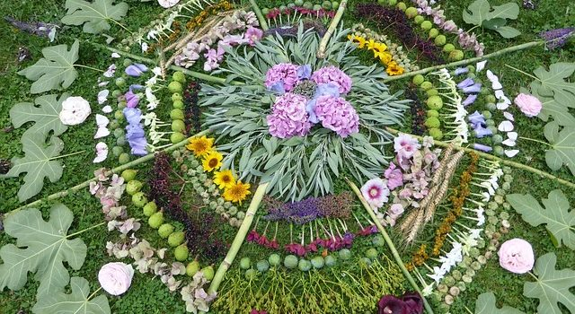 VibrationsCoaching:natural mandala from a retreat