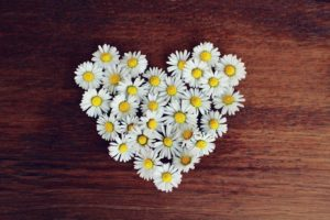VibrationsCoaching:daisy heart