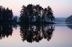 Vibrations Coaching: Reflections